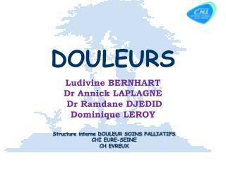 Structure interne DOULEUR SOINS PALLIATIFS CHI EURE-SEINE CH EVREUX