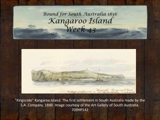 Bound for South Australia 1836 Kangaroo Island Week 43