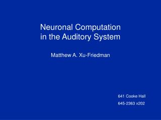 Neuronal Computation in the Auditory System