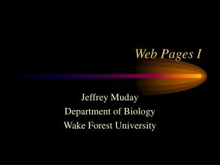 Web Pages I