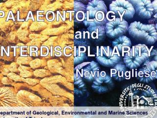 Applications of the palaeontology: - study of the evolution - interpretation of  spatial distribution of ancient organi