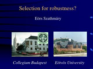 Selection for robustness?