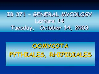 IB 371 – GENERAL MYCOLOGY Lecture 14 Tuesday,  October 14, 2003