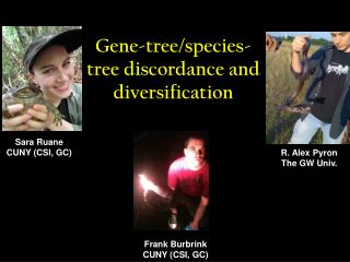 Gene-tree/species-tree discordance and diversification