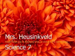 Mrs. Heusinkveld Hugh-SINK (as in kitchen)-V-as in victor-e-l-d (as in dog) Science 7