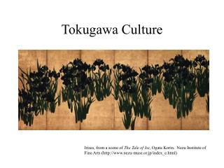 Tokugawa Culture