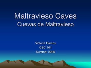Maltravieso Caves Cuevas de Maltravieso