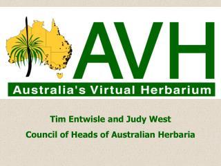 AVH - Australia's Virtual Herbarium Logo