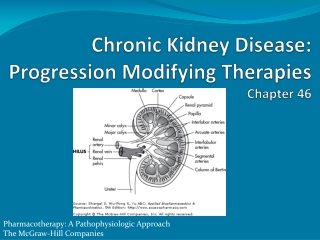 Chronic Kidney Disease: Progression Modifying Therapies  Chapter 46