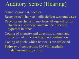 Auditory Sense (Hearing)