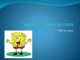 Sponges Discussion