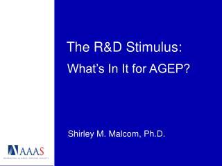 The R&D Stimulus: