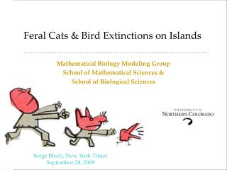 Feral Cats & Bird Extinctions on Islands