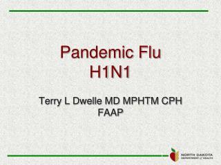 Pandemic Flu H1N1