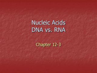 Nucleic Acids DNA vs.  RNA