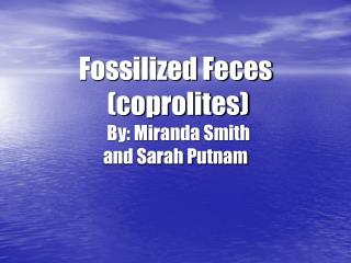 Fossilized Feces  (coprolites) By: Miranda Smith                                       and Sarah Putnam