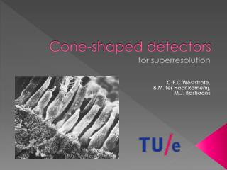 Cone-shaped detectors