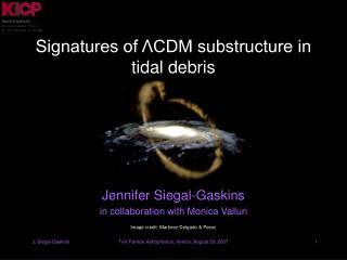 Signatures of ΛCDM substructure in tidal debris