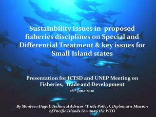 Sustainbility Issues in  proposed fisheries disciplines on Special and Differential Treatment & key issues for Small Is