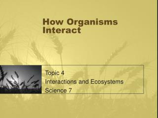 How Organisms Interact