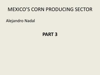 MEXICO'S CORN PRODUCING SECTOR