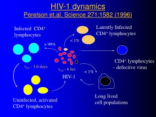 HIV-1 dynamics Perelson et.al. Science 271:1582 (1996)