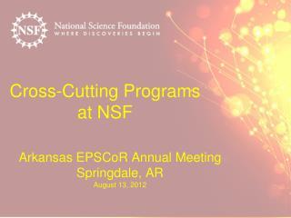 Cross-Cutting Programs  at NSF