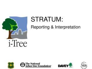 STRATUM: