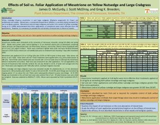 Effects of Soil vs. Foliar Application of Mesotrione on Yellow Nutsedge and Large Crabgrass