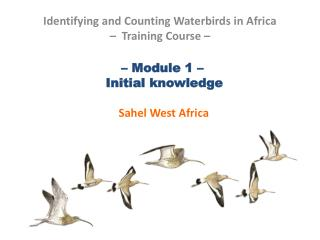 – Module 1 –   Initial knowledge  Sahel West Africa