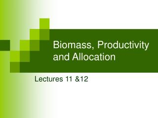 Biomass, Productivity and Allocation