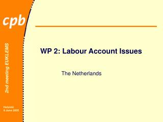 WP 2: Labour Account Issues