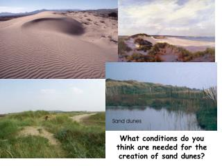 What conditions do you think are needed for the creation of sand dunes?