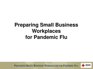 Preparing Small Business  Workplaces  for Pandemic Flu