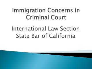 Immigration Concerns in Criminal Court