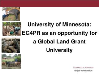 University of Minnesota: EG4PR as an opportunity for  a Global Land Grant University