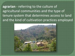 agricultural origins - widely accepted theory that agriculture began in the fertile crescent of modern day Southwest As
