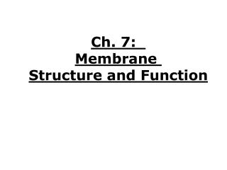 Ch. 7:   Membrane  Structure and Function