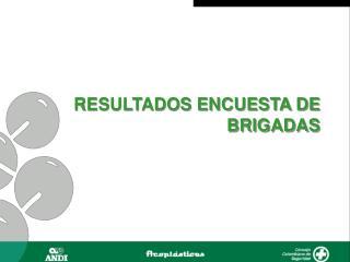 RESULTADOS ENCUESTA DE BRIGADAS