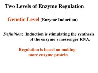 Two Levels of Enzyme Regulation
