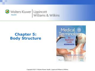 Chapter 5: Body Structure