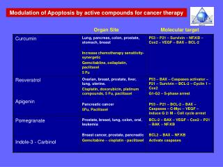 Modulation of Apoptosis by active compounds for cancer therapy