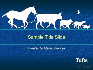Sample Title Slide