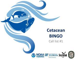 Cetacean BINGO