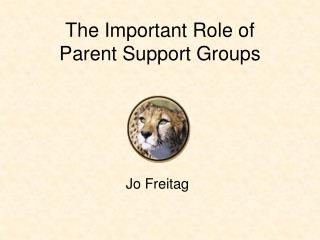 The Important Role of  Parent Support Groups