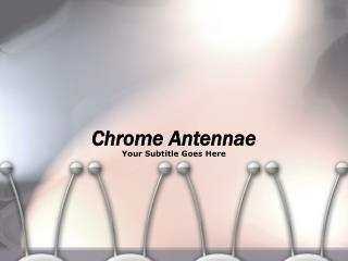 Chrome Antennae