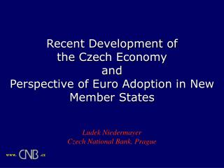 Recent Development of  the  Czech Economy and  Perspective of Euro Adoption in New Member States