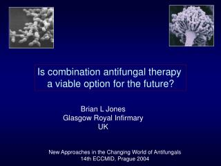 Is combination antifungal therapy  a viable option for the future