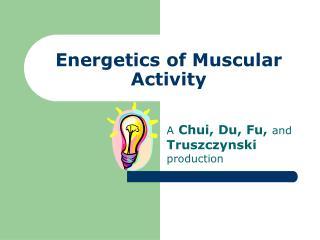 Energetics of Muscular Activity