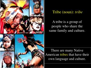 A tribe is a group of people who share the same family and culture.